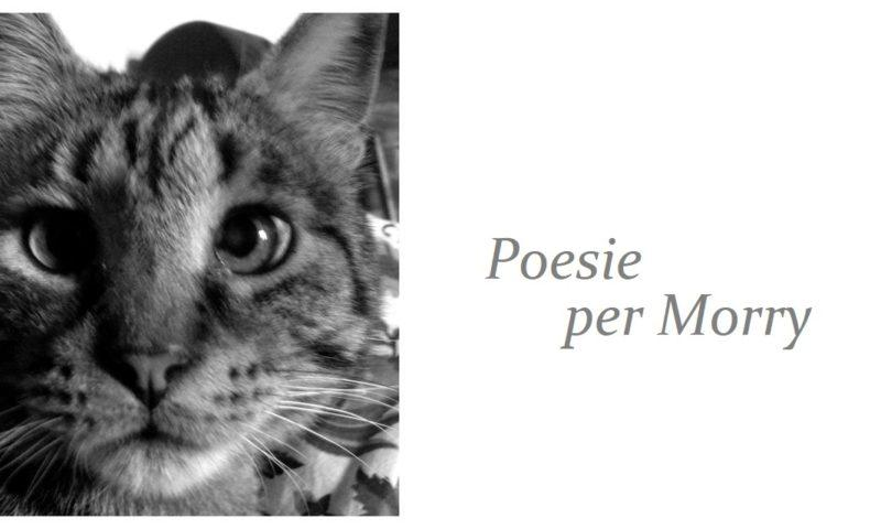 Poesie per Morry