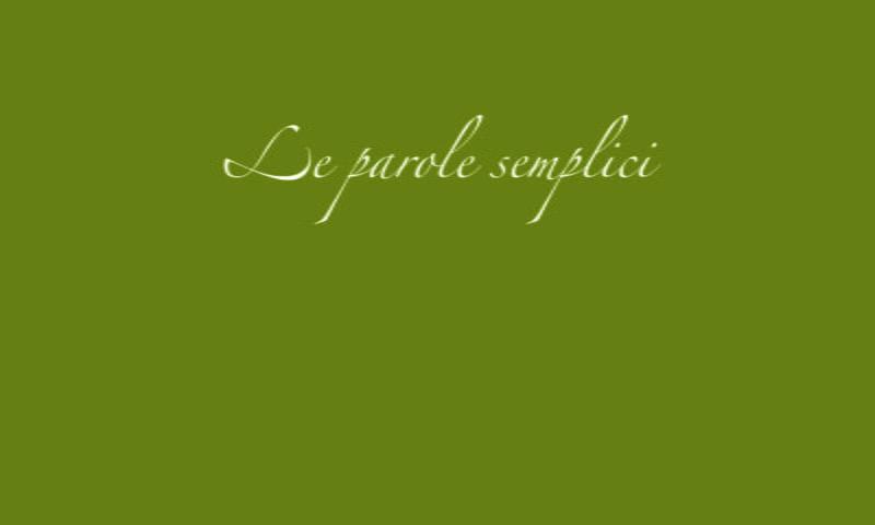 """""""Le parole semplici"""" di Fabrizio Bernini"""