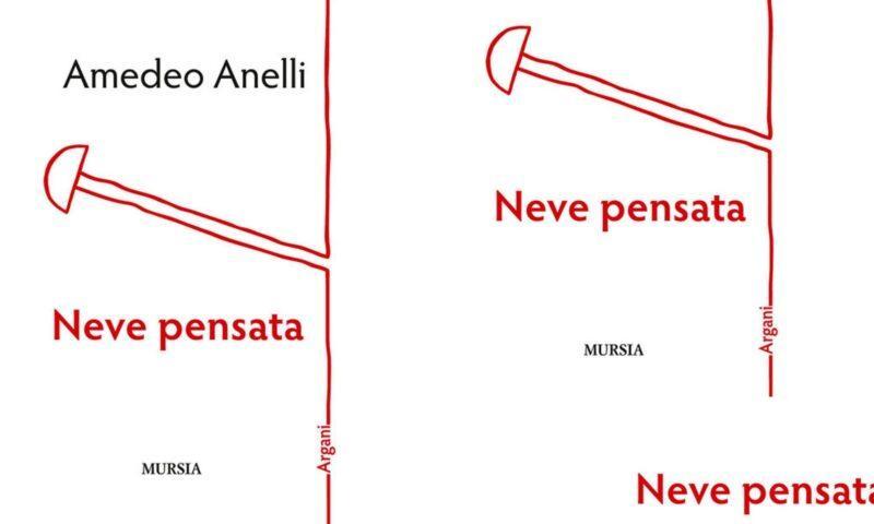 """Le forme del silenzio nell'ultima raccolta di Amedeo Anelli, """"Neve pensata""""."""