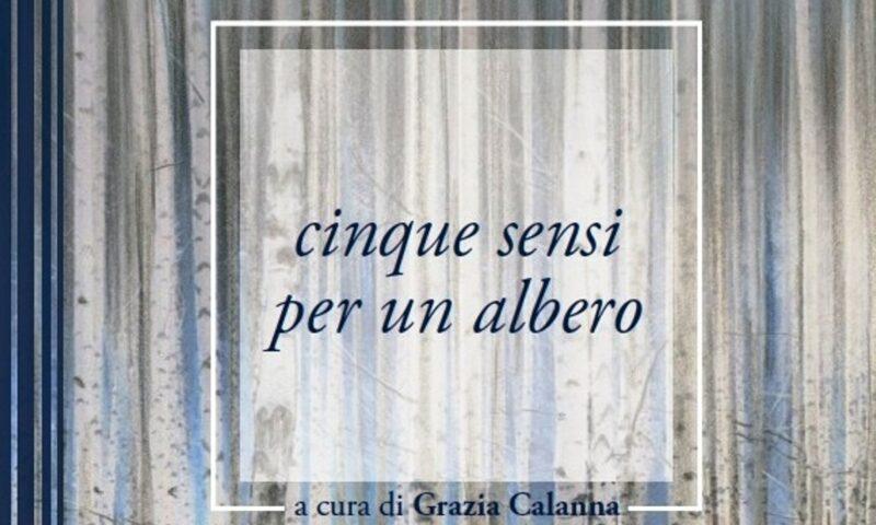 """cinque sensi per un albero"" di AA.VV. a cura di Grazia Calanna"