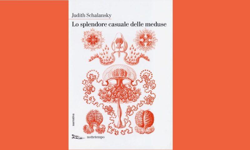 Asteroidi D'inchiostro (Lo splendore casuale delle meduse)