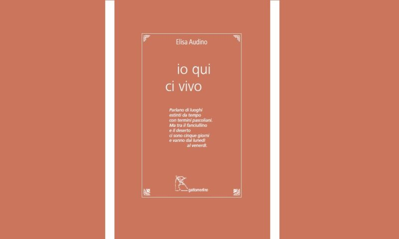 "Elisa Audino, poetica e versi da ""io qui ci vivo"", Gattomerlino 2021."