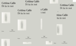 """""""Di tu in noi"""" di Cettina Caliò, una geologia poetica riversata nei paesaggi essenziali del verso."""